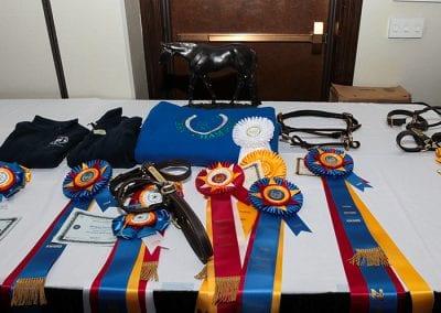 nhec awards