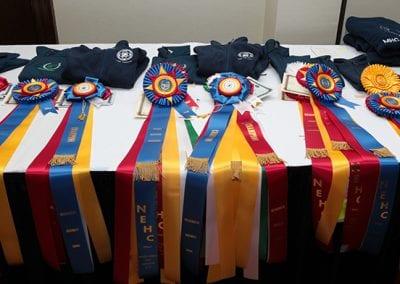 nehc awards
