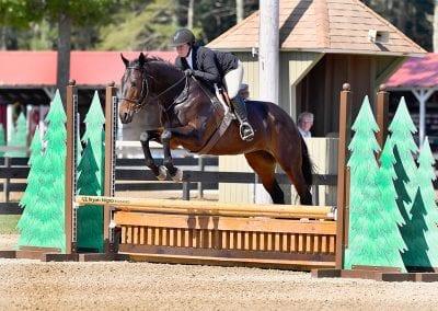 Wendy Johnson, nehc member on horse