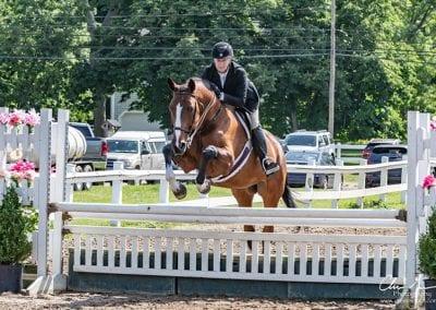 nehc member on horse